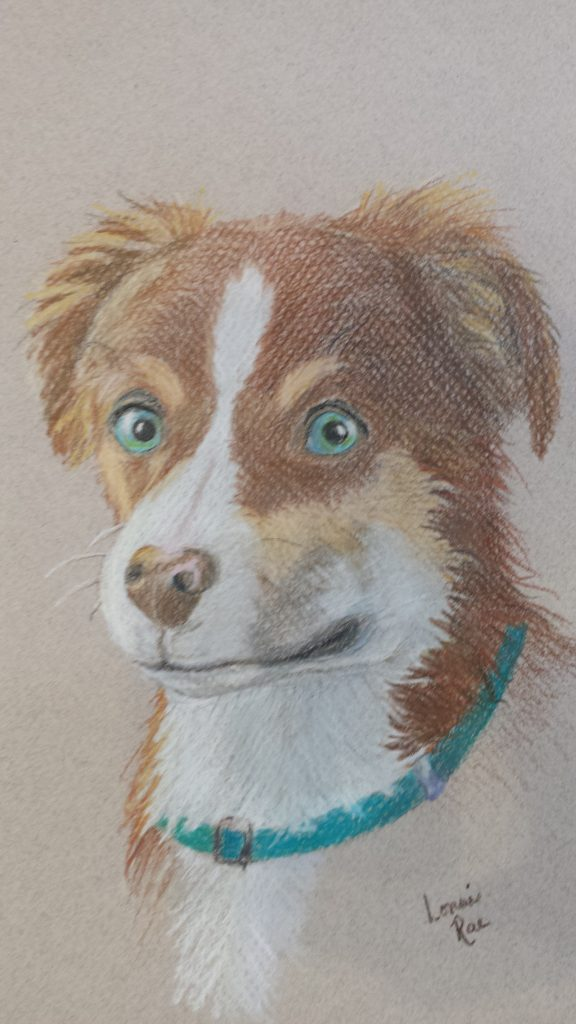 Seattle Colored Pencil Classes Colored Pencil For Beginners
